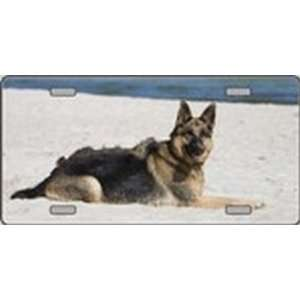 German Shepherd Dog Pet Novelty License Plates Full Color Photography