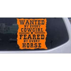 Wanted By Cowgirls Feared By Horses Western Car Window Wall Laptop