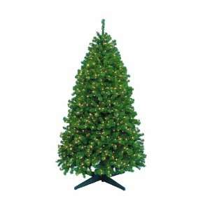 Barcana 5 Foot Remote Control Highland Fir Christmas Tree with 800